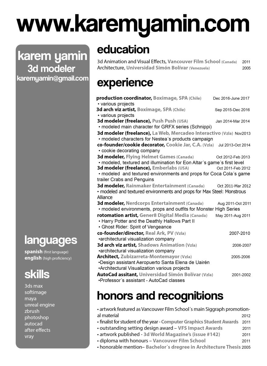 Resume Karem Yamin english 2017